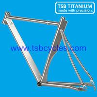new type triathlon bike frame TSB-T1001