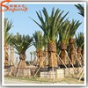 2015 quality silk and look like real palm tree fake inflatable palm tree plants