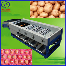 factory product electronic fruit sorting machine