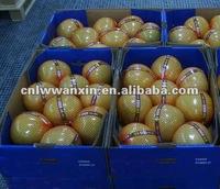 fujian new crop honey pomelo