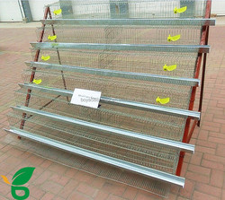 automatic quail cage battery equiped drinker cup and feed trough for sale