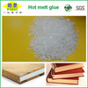 Hot Melt Technologies Adhesives for High Request Book Gluing Equipment