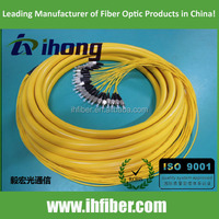 24 core FC SM Optical Fiber Pigtail