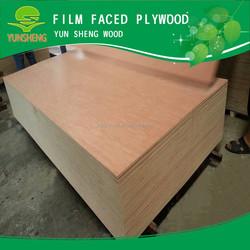 3mm Red Oak /Teak/ Ash Veneer Fancy Plywood Price for Decoration
