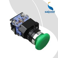 Saip/Saipwell Momentary Illuminated High Quality New China Supplier 22mm Mini Waterproof Electrical Push Button Switch