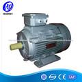 Motor de inducción de uso industrial AC en Motor de 3 fases