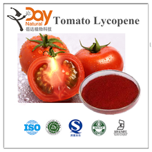 Manufacturer Supply GMP Certificate 100% Pure Natural Lycopene Tomato Powder in Bulk