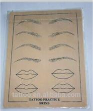 Eyebrow Permanent Makeup Tattoo Practice Skins For Tattoo Beginner