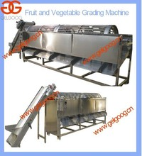 Vegetable Factory Type Vegetable Sorting Machine  Potato Onion Cleaning and Grading Machine