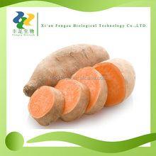 High quality natural fructus sweet potato powder & Anthocyanin 10:1