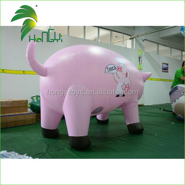 ping pig  (6)