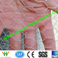Dingzhou good quality 0.6mm-1.4mm stainless steel hexagonal wire mesh(ISO9001:2000 factory)