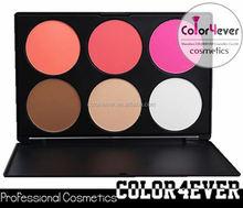 Cosmetic Makeup Blusher Palette Soft Natural Blush Powder makeup own label
