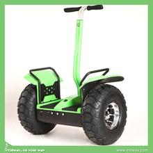Factory sale OEM cheap mini 2 wheel electrical car