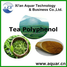 Export High Quality green tea Extract and green tea powder