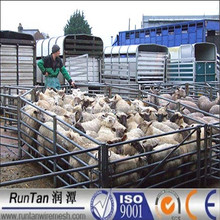 pipe corral fence panels for sheep goat (Factory since 1989 year)