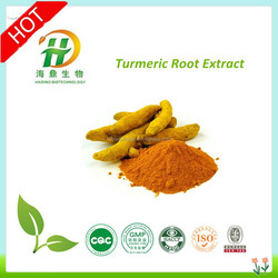 Curcumin Extract 95% by HPLC/ ISO Turmeric Extract 95% / Natural Turmeric 95% Extract