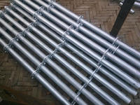 China Renqiu hot sale high quality ringlock system factory finding foreign scaffolding importer distributor