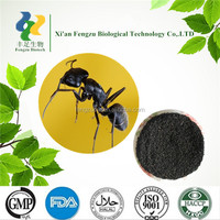 High quality black ants extract & black ants extract powder for man sex