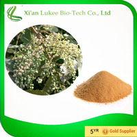 Galla Chinensis extract / Galla Chinensis P.E / Gallic acid / Ellagic Acid