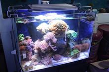 HRF 1200mm 1500mm 1800mm Emitting Color Blue& White150W Computer Controlled 3 Watt for Fish Tank led aquarium light