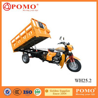 China Hot Sale High Quality Low Oil Consumption Powered By Famous Lifan 250CC Air Cooled Cargo Tricycle