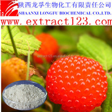 Manufacturer sales raspberry leaf extract