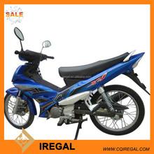 Gas Powered t-rex Bashan Motorcycle