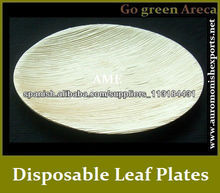 Disposable Leaf Plate