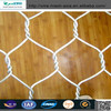 Hexagonal Wire Mesh (pvc & galvanized) direct from factory