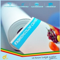 260gsm waterproof art supply inkjet canvas roll with eco solvent inks