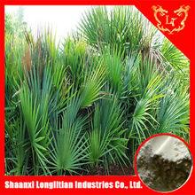 Low price saw palmetto powder extract ,serenoa repens extract 60% fatty acids.