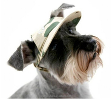 fashional dog cap