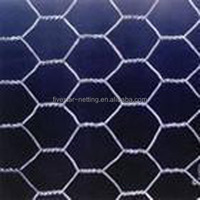 plastic chicken cage /Hexagonal Wire Netting Mesh Factory