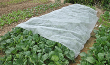 100% biodegradable non woven fabric for agriculture weed control