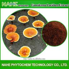 Herbal extract reishi mushroom powder, mushroom soup powder, growing reishi mushroom