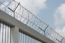 2015 the widespread use of low carbon or stainless steel razor barbed wire