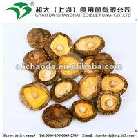 Dried lentinula edodes shiitake mushroom
