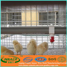 best price design layer chicken cages for hens/ breed chicken cage