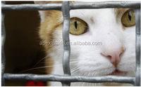 dog rabbit bire cage wire mesh