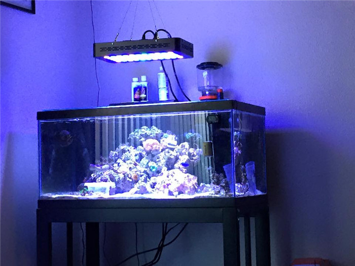 Manuel Dimmer 55pcs 3w Led Aquarium Light 120w Led Reef