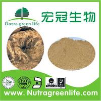 China Supplier Medicine for Blood Circulation Angelicae Pubescentis P.E. Powder