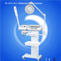 Hot Sale 10 in 1 salon facial machine RU-1311A Cynthia