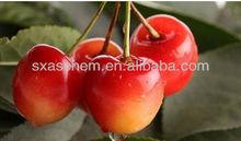 Acerola cherry extract Hot sale