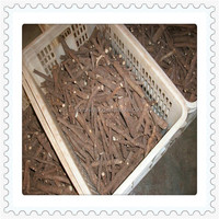 Chinese wholesale rooted plant cuttings for planting