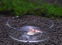 Wholesale aquarium Acrylic crystal shrimp dish, fish bowl
