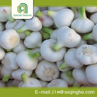 fresh red chinese white garlic in 10kg