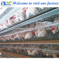 New Design BT factory A-120 type chicken laying cage (Welcome to Visit my factory)