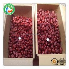 New most popular dry jujube fruit
