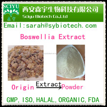 supply Mastic gum extract